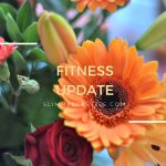 Fitness Update // End of P90