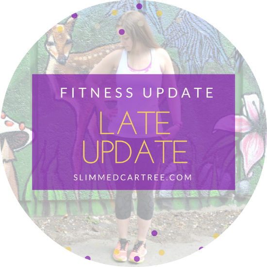 fitnes update