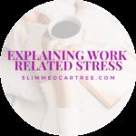 Explaining Work Related Stress