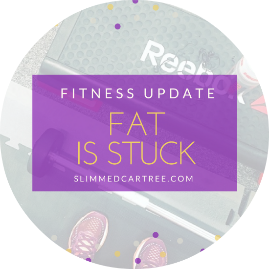 Fitness Update // Fat is stuck to me