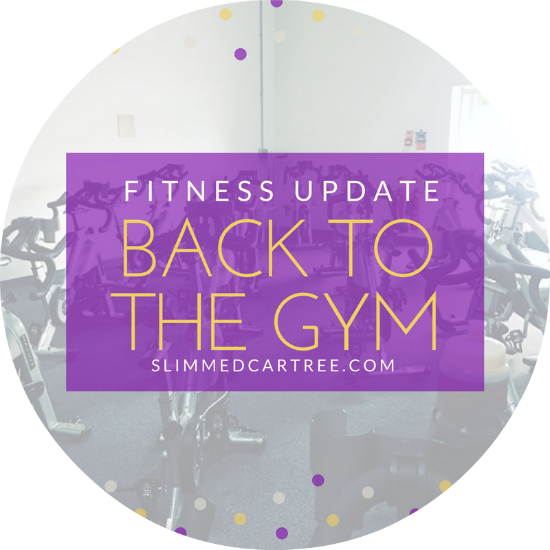 Fitness Update // Back on it