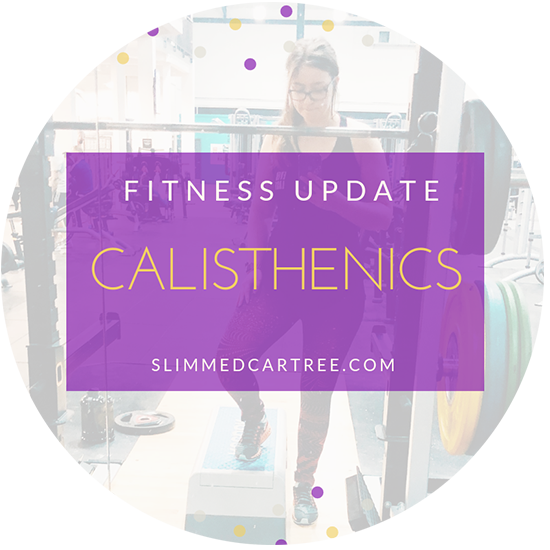 Fitness Update // Calisthenics