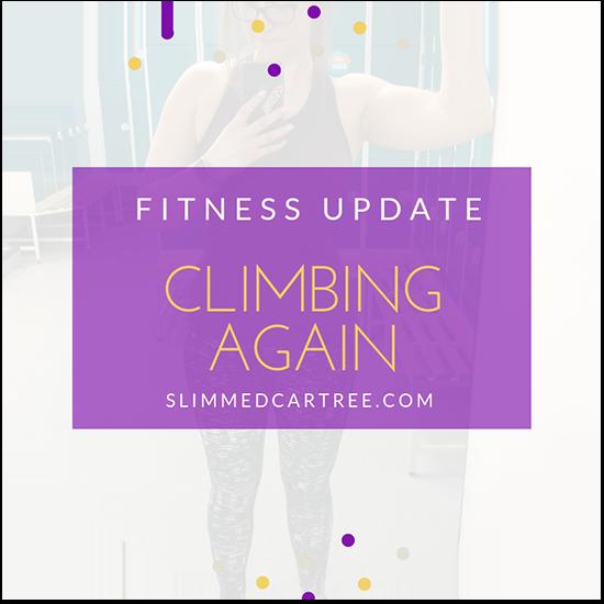 Fitness Update // Went climbing!